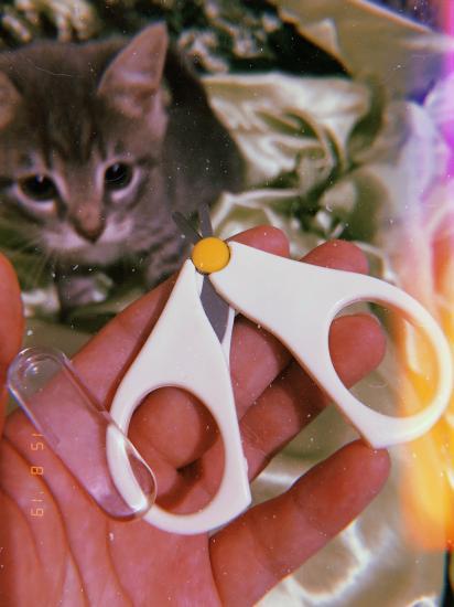 Ножнички ещё пришли, тоже с Али,