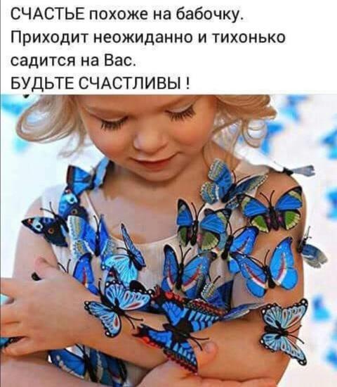 Вот и наша бабочка родилась и сопит