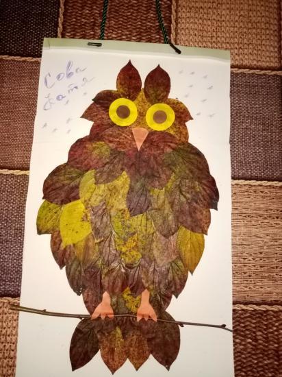 Наша сова Катя. 😄😊 Младший дал