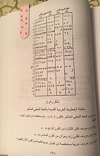 💥🌈Интересные факты об арабском