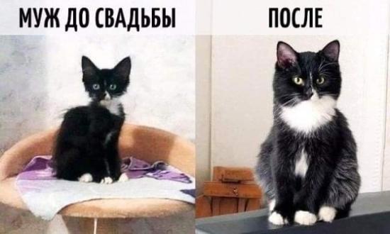 Как же жизненно)