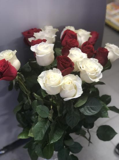 ваши мужья  знают какие Цветы любите