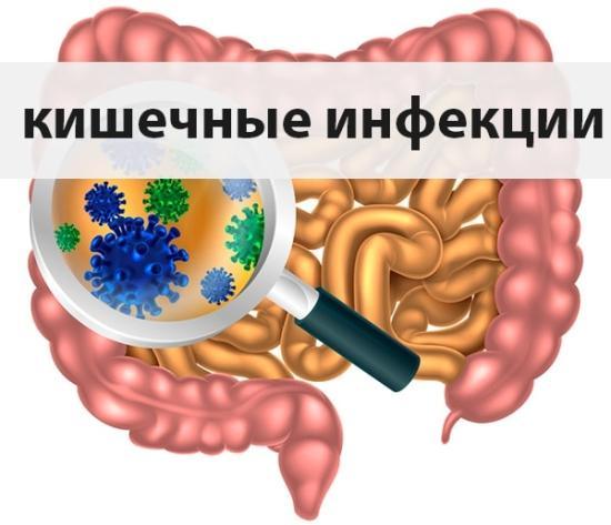 Начнём тему кишечных инфекций !